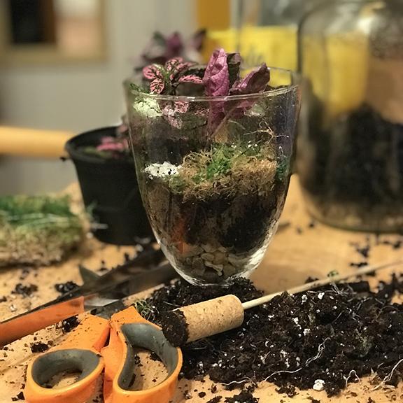 Meeting Mix-in - Terrariums